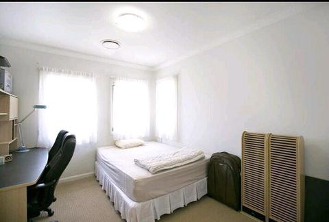 Room rent @ Little Bay Eastern suburbs Matraville Maroubra Botany